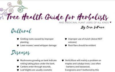 Presentation Materials – Medicinal Trees and Shrubs/ Harvesting and Preserving Medicinal Herbs