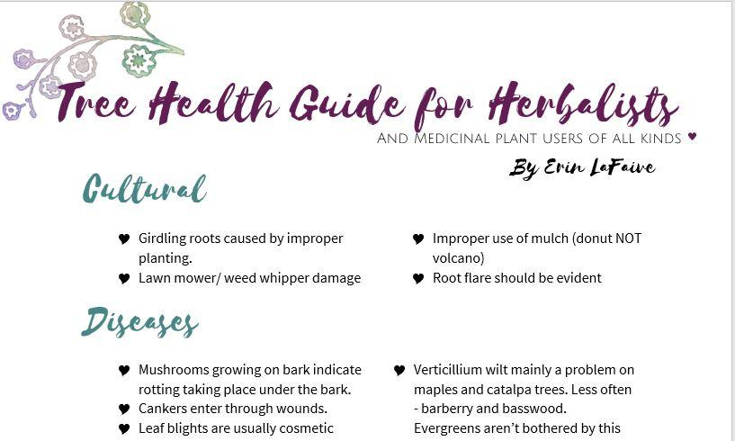 Presentation Materials – Medicinal Trees and Shrubs/ Harvesting and Preserving Medicinal Herbs