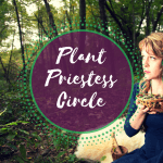 Explore sacred plant wisdom in the plant priestess circle.
