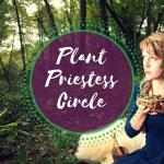 Explore sacred plant wisdom in the plant priestess circle.
