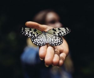 butterfly on a lady's hand