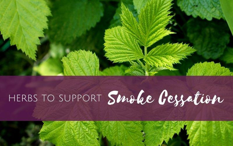 Episode 3 – Herbs to support smoke cessation