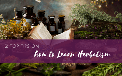 2 Top Tips on How to Learn Herbalism