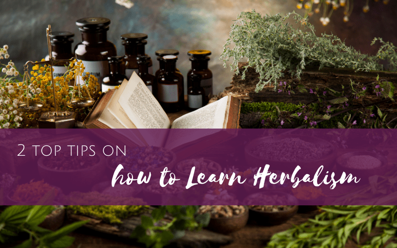 Episode 16: Two Top Tips about How to Learn Herbalism