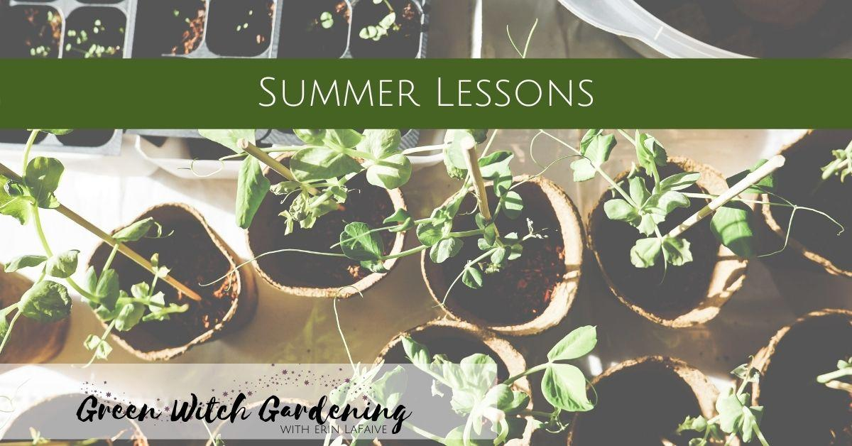 summer lessons