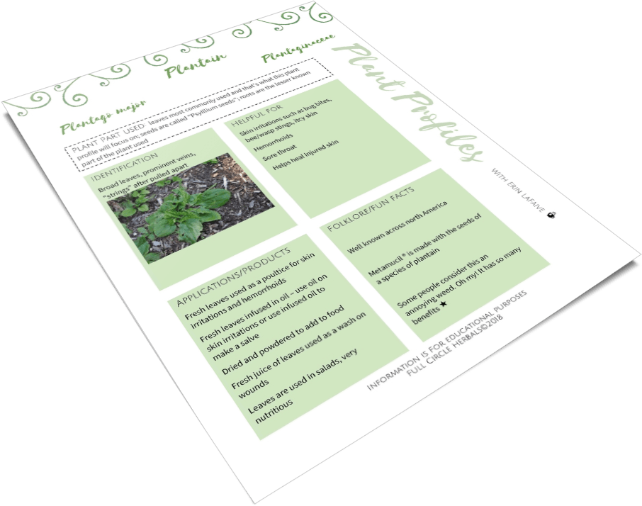 2d image of plantain page