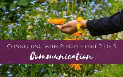 Connecting with Plants part 2 of 5 – Communication