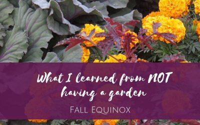 What I learned from NOT having a garden: Fall Equinox