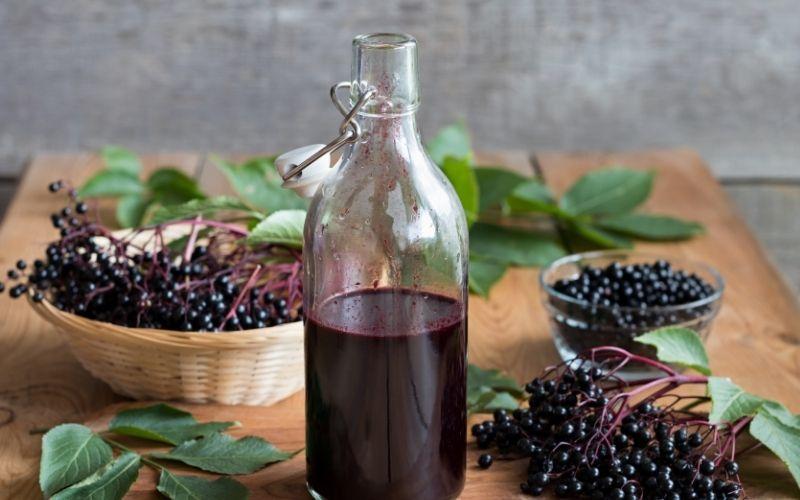 elderberry syrup and elderberries